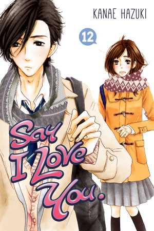 Say I Love You 12 cover