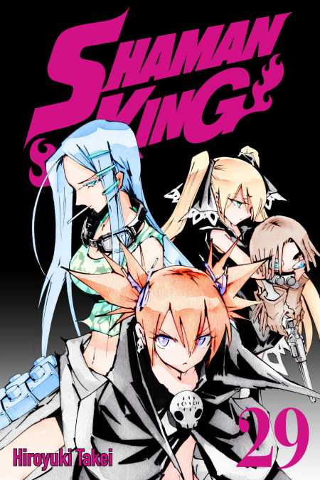 cover for Shaman King, 29