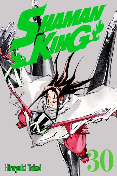 cover for Shaman King, 30