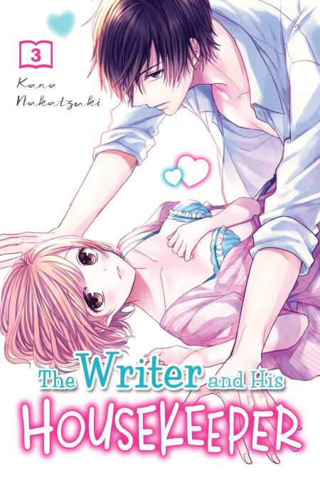 cover for The Writer and His Housekeeper, 3